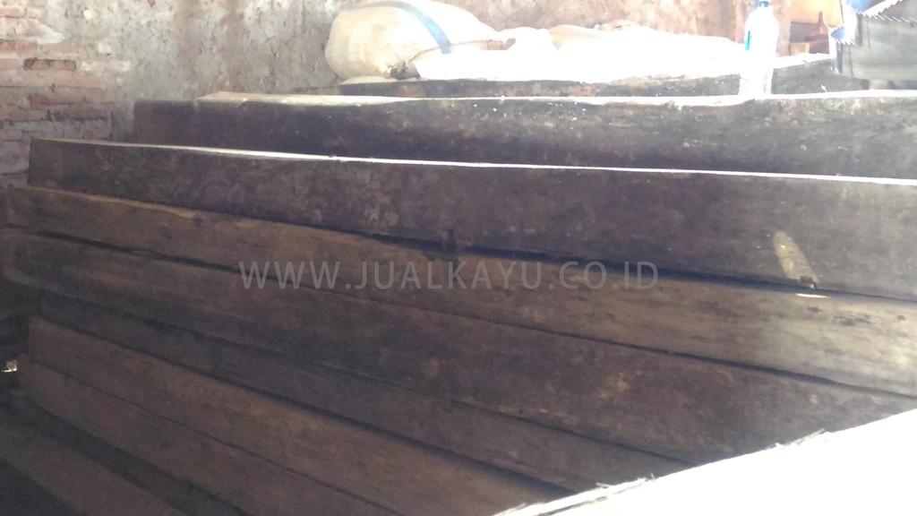 jenis kayu kruing